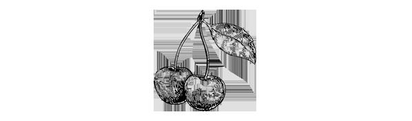 Notes de dégustation : cerises