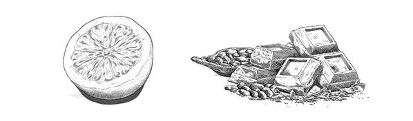 Notes de dégustation : citron et chocolat